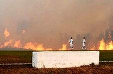 آتشسوزی آمازون بازی فوتبال را در برزیل متوقف کرد