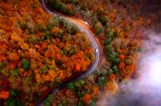 زیباییهای حیرت آور پاییز در منطقهای که مشابه جنگلهای اروپاست