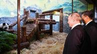 پوتین و رئیس جمهور چین در باغ وحش مسکو