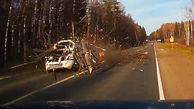 فیلم لحظه وحشتناک سقوط درخت روی خودروی سواری