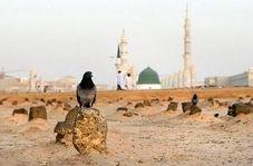 زیارت بقیع در آخرین روز حضور حجاج ایرانی در مدینه +فیلم