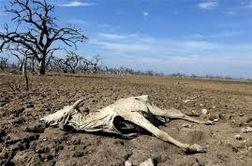 قسمتی جدید و ترسناک از بحران آب در ایران