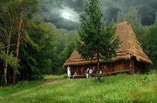 کلبه ای زیبا در دل طبیعت که گردشگران زیادی را به طرف خود میکشاند