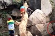 حمله فیل مادر به ساکنان محلی هنگام نجات بچه فیل
