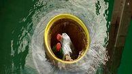 سطل آشغال شناور دریایی