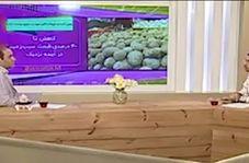 عذرخواهی مجری تلویزیون از خواندن اخبار امیدوارکننده قیمت سیبزمینی