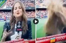 اتفاقی غیرمنتظره برای خبرنگار زن در استادیوم فوتبال!