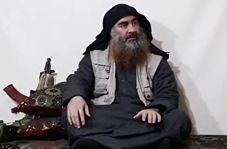 گزارش کار گرفتن ابوبکر بغدادی از فرمانده داعشی!