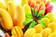 همه چیز درباره پادشاه میوهها!
