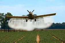 مهارت خارق العاده خلبان هنگام پرواز در ارتفاع پایین!
