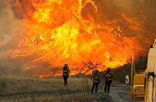 نابودی ۱۲۰ خانه در کالیفرنیا بر اثر آتش سوزی