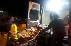 ۱۸ مصدوم در واژگونی خودرو در فیروزکوه + فیلم