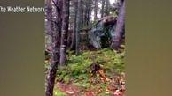 پدیدهای عجیب از تکان خوردن زمین در کانادا!