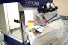 دستگاه نابود کننده ویروس کرونا در ایران ساخته شد