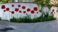 ابتکار جالب پیرمرد لشت نشایی برای زیبا کردن خانه اش