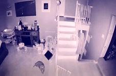 بازبینی دوربین مداربسته یک خانه، مالک آن و همسرش را شوکه کرد