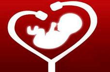 تشخیص ناهنجاریهای قلب جنین چه زمانی ممکن است؟