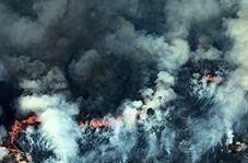 آتش دیوانه در جنگلهای آمازون