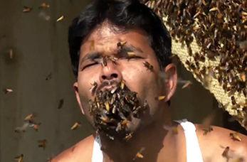 هل دادن یک مشت زنبور در داخل دهان توسط مرد هندی
