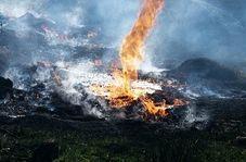 سوزاندن شبانه ضایعات در بهارستان!
