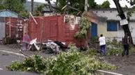 طوفان مرگباری که درختان را هم درسته از جا درآورد