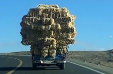 بار کامیون بر روی نیسان!