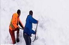 لحظه نجات یک بز از دل برف
