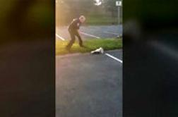 کمک پلیس به راسویی که سرش در ظرف گیر کرده بود