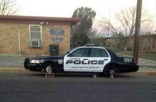 لحظات دیدنی از سرقت ماهرانه ماشین پلیس توسط دختر ۱۷ ساله