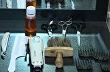 رقابتی جذاب بین بهترین آرایشگران کشور
